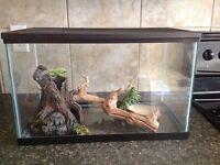 Glass All-Purpose Reptile Cage
