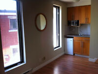 Renovated Studio, all included, next to Roxboro train station.