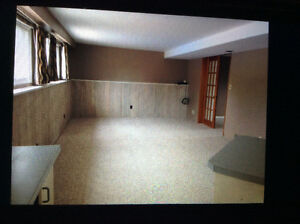 Bright basement suite 1 bed plus den in Chilliwack $1100