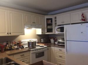 Sublet - 2 bedroom apartment 1/2 month rent free (mid-July)