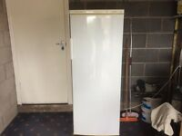 PROLINE FROST FREE TALL UPRIGHT FREEZER,VERY CLEAN