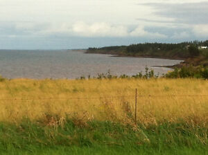 Looking for cottage rental July 1st-Sept 30th near Seafoam