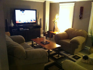 Newly Renovated Separate Entrance Basement Apartment