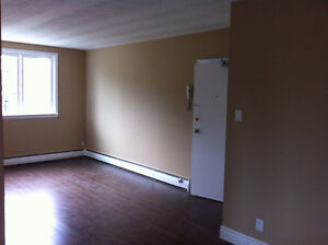 Available immediately! 1 bdrm apt. Great location. Can furnish.