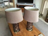 Pair of Bronze effect table Lamps
