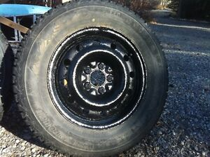 215/70R16 Firestone Winter Tires on Black Steel Rims For Sale