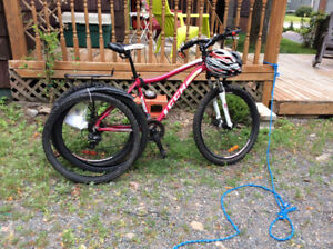24 speed CCM mountain bicycle Incline.
