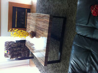 Coffee table set and rug 9x10