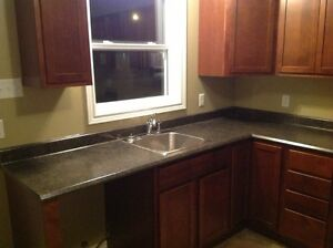 CONDOS FOR RENT ONLY $ 750.00 / MONTH !! St. John's Newfoundland image 4