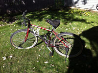 Men's mountain bike (adult) and comfy seat