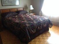 Beautiful bedspread plus headboard