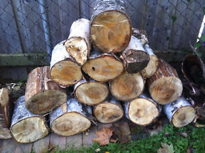 White Birch Fire Wood Logs for sale