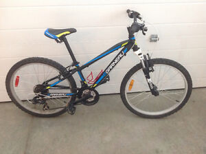 Louis Garneau mountain bike