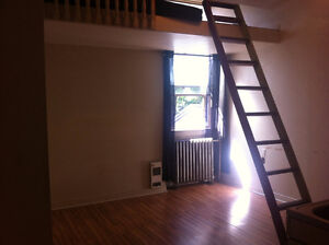 Bachelor Apartment for Oct 1
