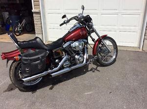 2001 Harley Davidson Dyna Softail - mint -8995.00