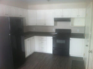 A newly renovated 2 bedroom APT