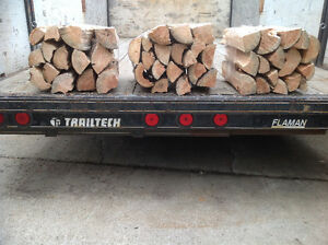 Large Firewood Bundles