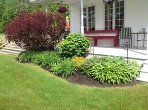2 Yards of Mulch - Black, Red or Mahogany Including Delivery