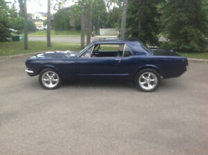 Ford Mustang   Great Selection of Classic, Retro, Drag and