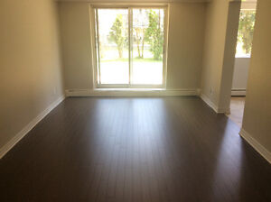 Bright, Clean, Updated 3 Bedroom Apartment!