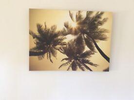 Palm canvas picture