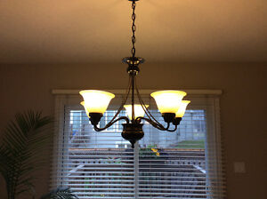6 Light Fixtures - $150 for all