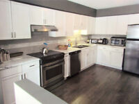 REPAINTING KITCHEN CABINETS AND VANITIES
