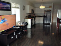Ground floor with basement avail for rent $1750