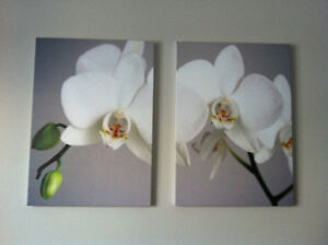 2 complementary canvas pictures