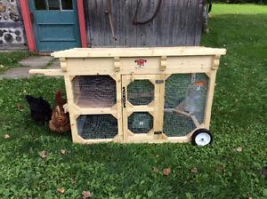 Poulailler transportable( poules et accessoires inclus)