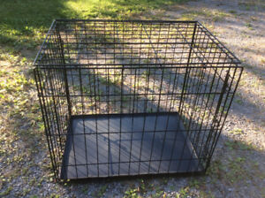 """Dog Crate 24""""x36"""" as new"""