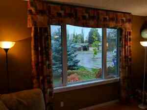 Vertical blinds and Drapes ( window dressing/treatments)