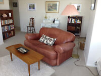 Lakeshore Apartment near Downtown to Sublet