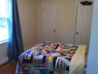 Great 1 bedroom apartment in country like setting
