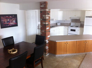 Large space for rent in shared, bright, lakeview walkout