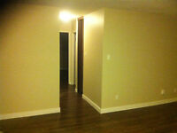 PROFESSIONAL PAINTING BEST PRICE IN TOWN