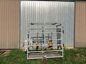 Cage pour tailler les sabots des bovins ou autre.