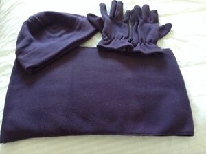 BRAND NEW Scarf, Hat and Glove Set