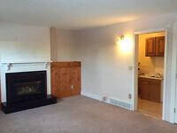 One bedroom basement suit for rent sw