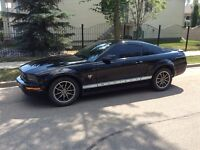 2009 Ford Mustang V6 Pony Package Coupe (2 door)