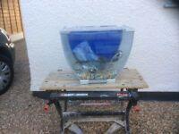 Complete curved aquarium fish tank set up
