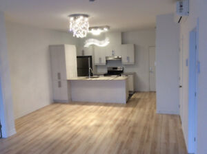 2 bedroom new condo Dix30  for rent