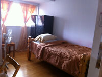 Room for rent female only near humber college north campus