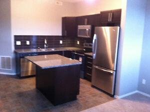 Townhouse Condo for rent in Ellerslie Edmonton Edmonton Area image 6