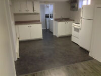 Recently renovated 2 bedroom basement apartment in skyline