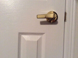Gold Plated Door Handles