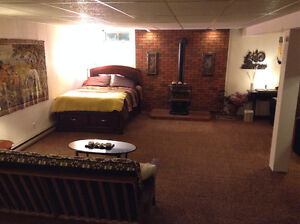 Large furnished basement studio with totally separated entrance