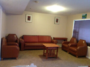 Bright spacious walk out basement for rent immediately