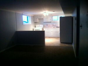 Bright, Centrally Located Daylight Basement Suite