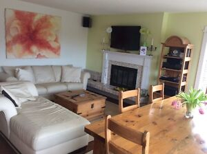 Gorgeous Furn'd 2 BR vacation rental. Jacuzzi, deck, bbq, yard